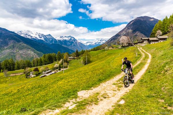 Alpe Carnale
