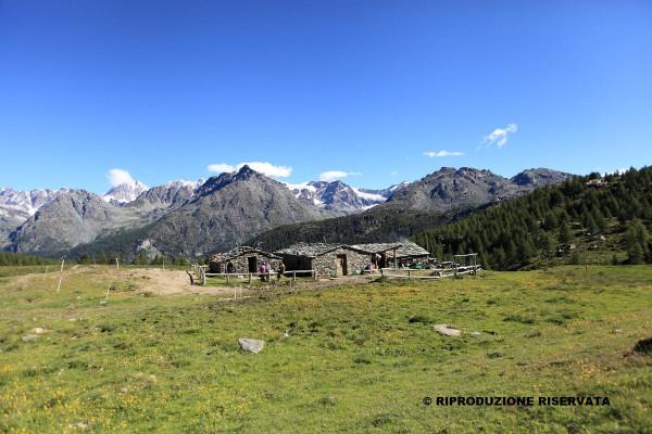 Alpe Acquanera
