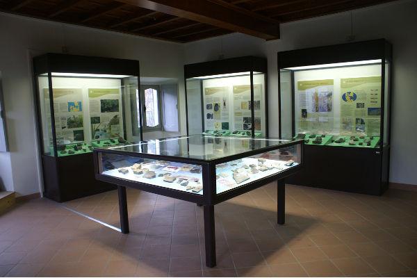 La sala paleontologica del museo di Grandola ed Uniti
